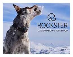 rockster_logo_web